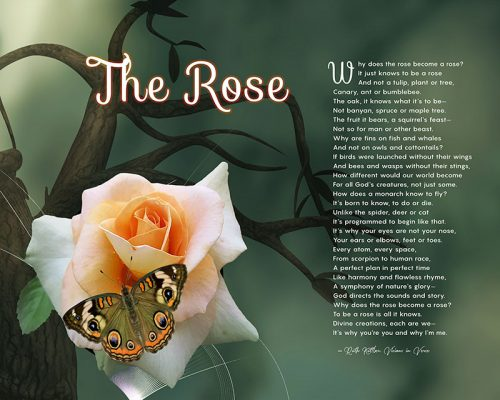 The Rose Butterfly Green Branch Art Poem Unique Inspirational Gift