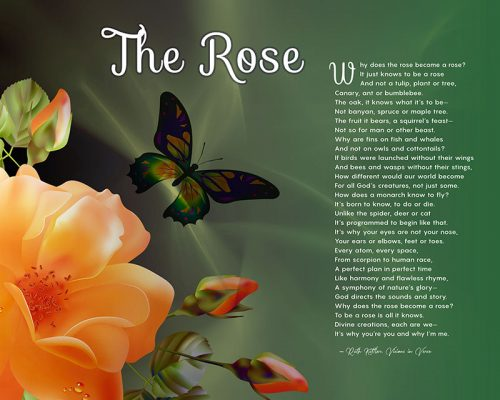 The Rose Peach Flower Art Poem Unique Spiritual Gift